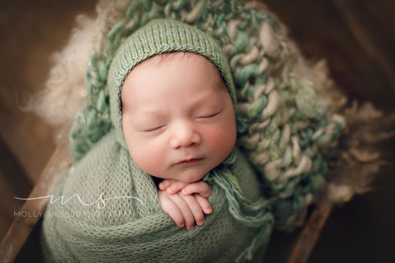 Minneapolis newborn photographer minneapolis newborn photographer