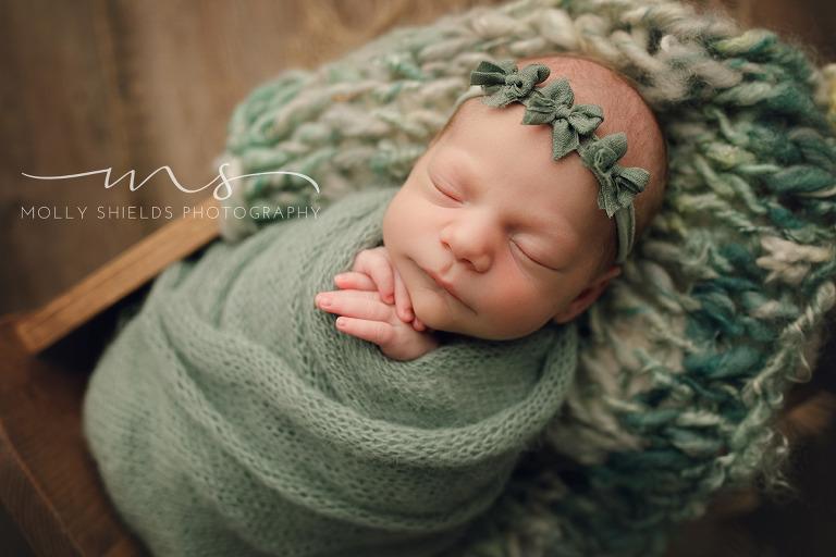 Minneapolis newborn photographer minneapolis newborn photographer minneapolis newborn photographer minneapolis newborn photographer